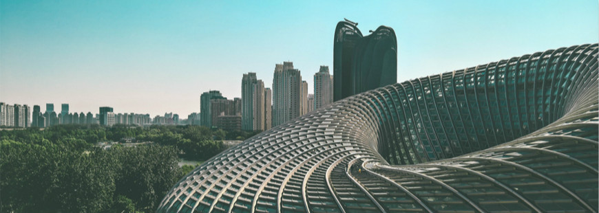 To Gain Success in China: Market Opportunities & How to Get Started